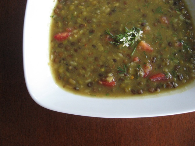 oh my dal with cilantro flower garnish